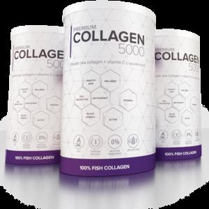 premium-collagen-5000-zamiennik-ulotka-premium-producent